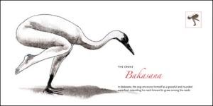 metamorphosis-bakasana1