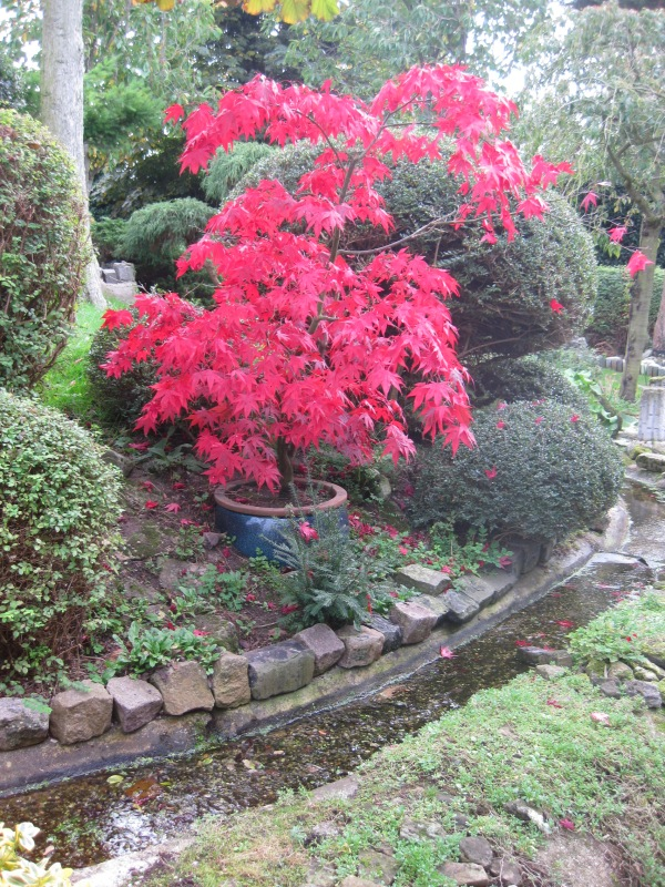 Pureland – Japanese Meditation Garden